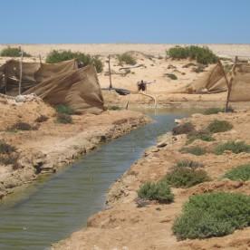 Conseil au maroc